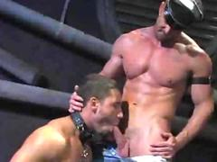 Hardcore Dilf Teaches His Slave To Blowjob