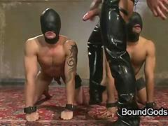Free leather gay video