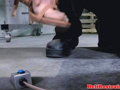 Sensory deprived bitch handling clamps