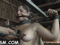 caged up beauty needs punishment feature movie 1