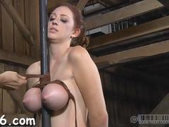 beauty loves brutal pleasuring bdsm video 1